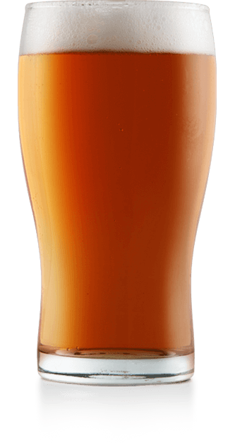 Half Moon Pumpkin Ale – do not use