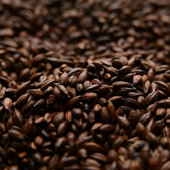 Briess: Roasted Barley