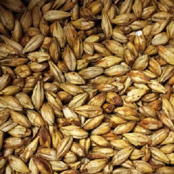Briess: Smoked Malt – Mesquite Wood