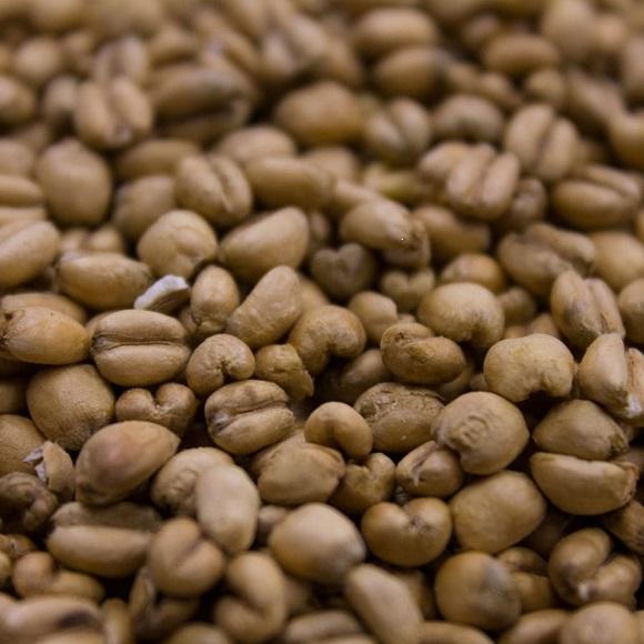 Crisp: Torrefied Wheat