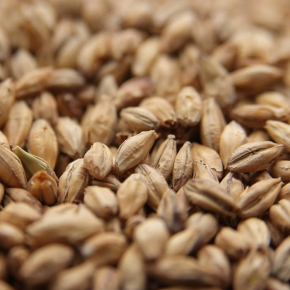 Weyermann: Pale Malt