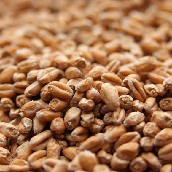 Weyermann: Pale Wheat